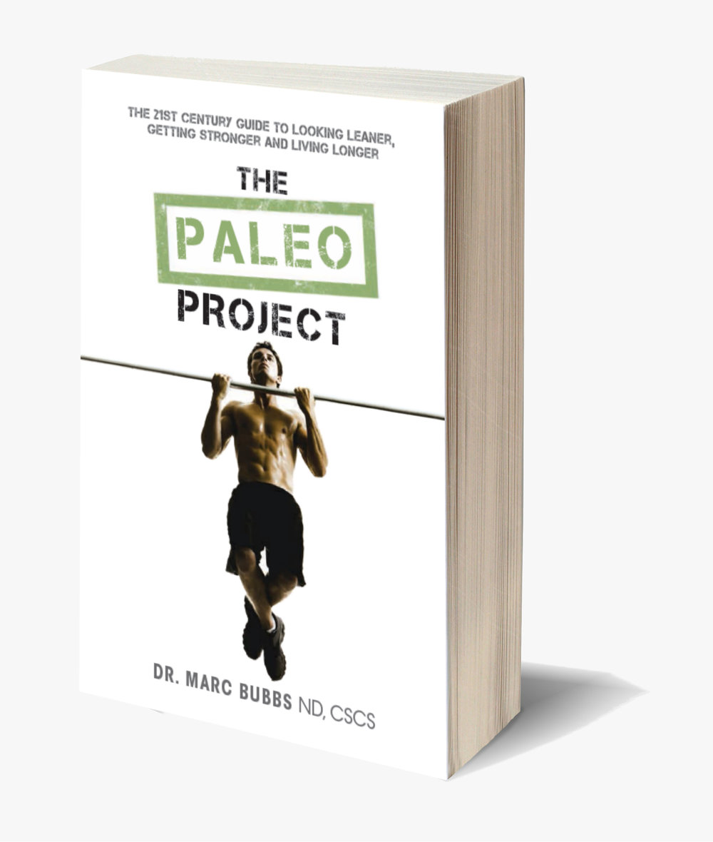 PALEO PROJECT 3D COVER.jpg