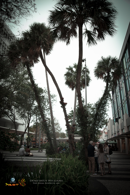 Lincoln Rd. - Miami Beach, FL