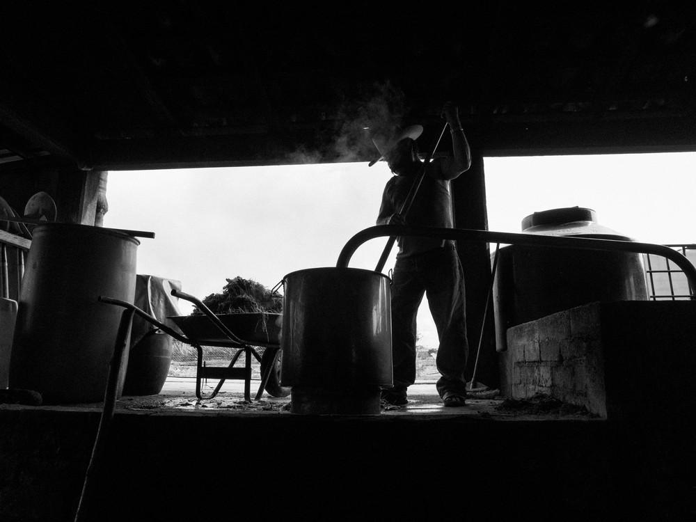 MEZsem-182.jpg