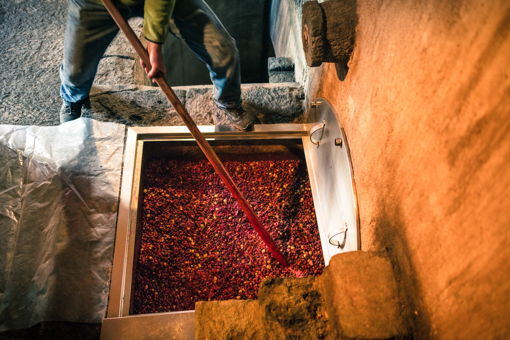 """Plunging the palmento."" Image courtesy Vino di Anna."