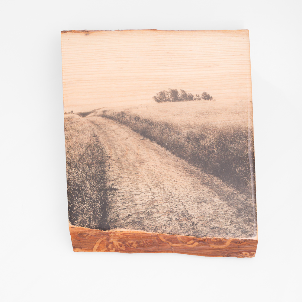 Mt Diablo, Field and Ash - One of a Kind - Woodprint