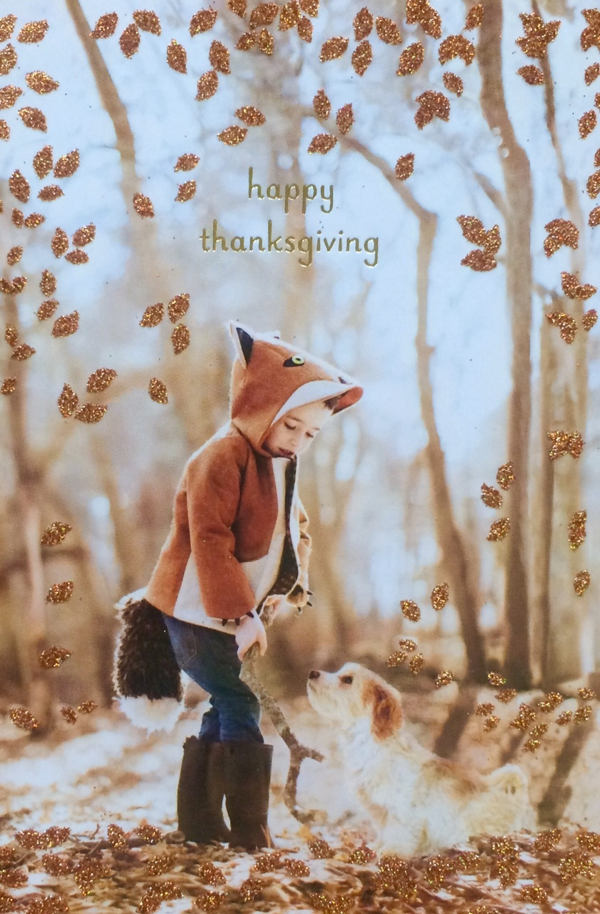 Thanksgiving card by Papyrus featuring a Little Goodall Fox Coat. Original image by Bellini Portraits.