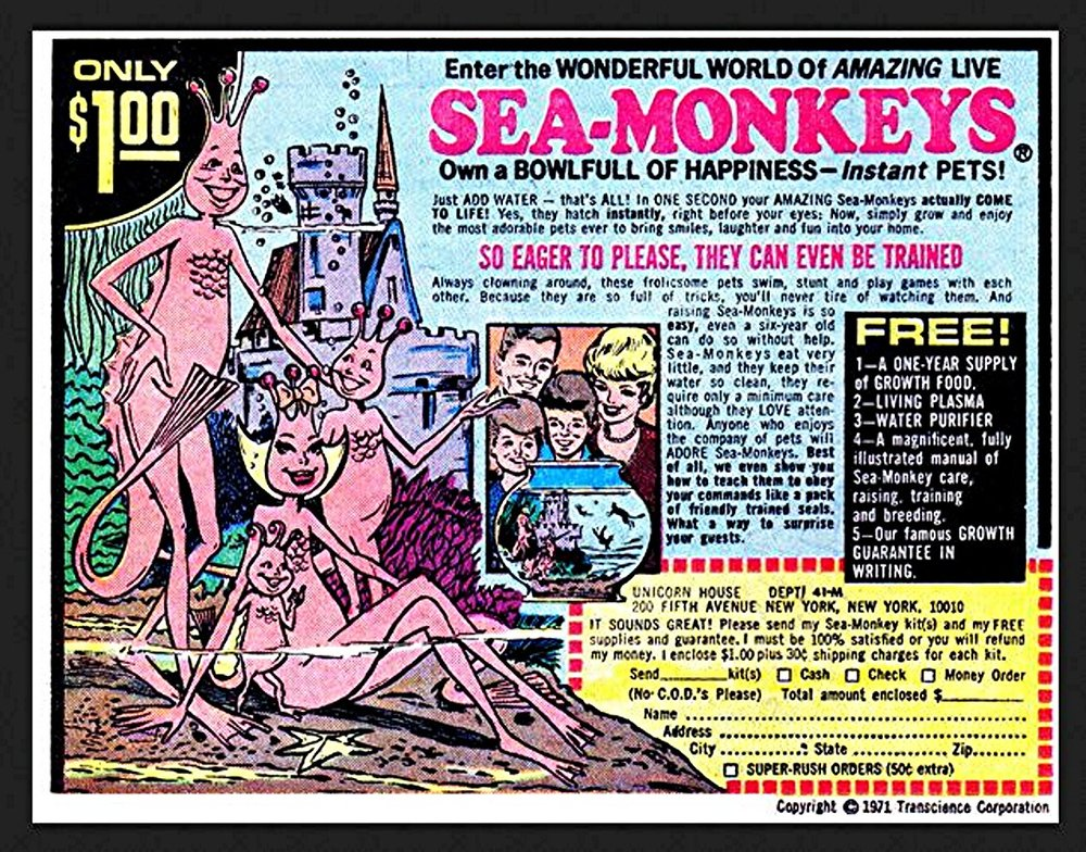 03 Sea Monkeys Ad 1.jpg