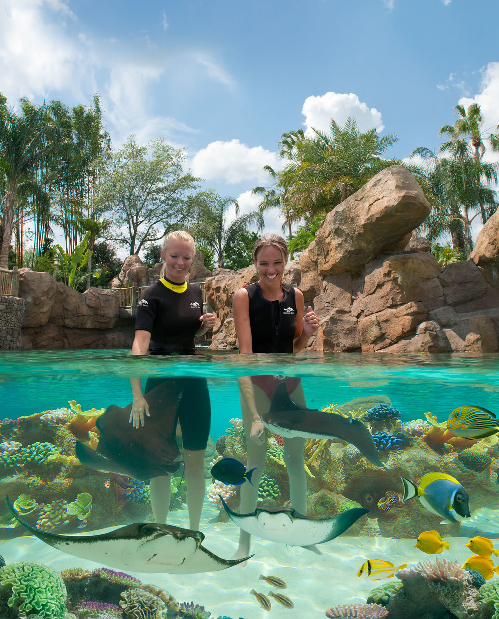 Discovery Cove High Res 6.jpg