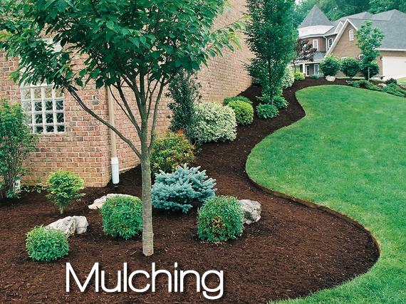 mulching.png