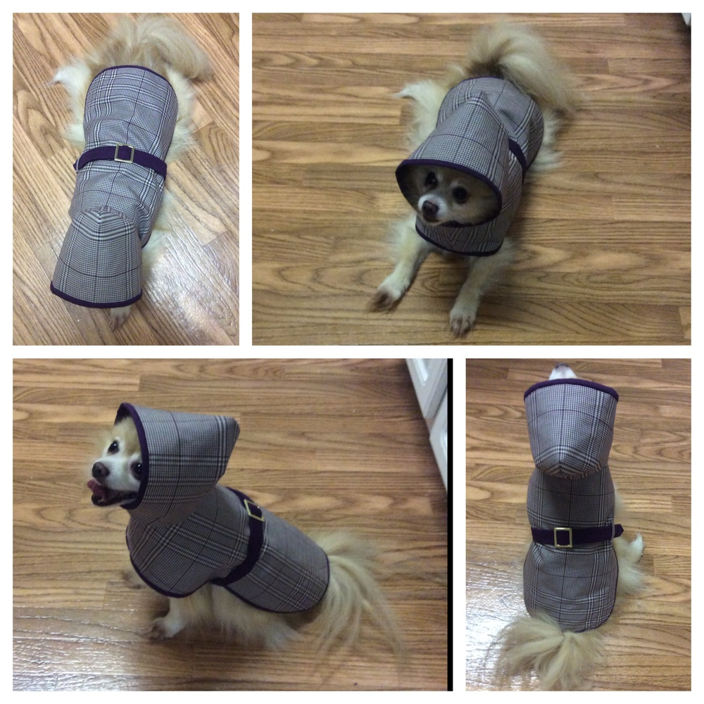 Bebe in his Bur-baby all weather coat