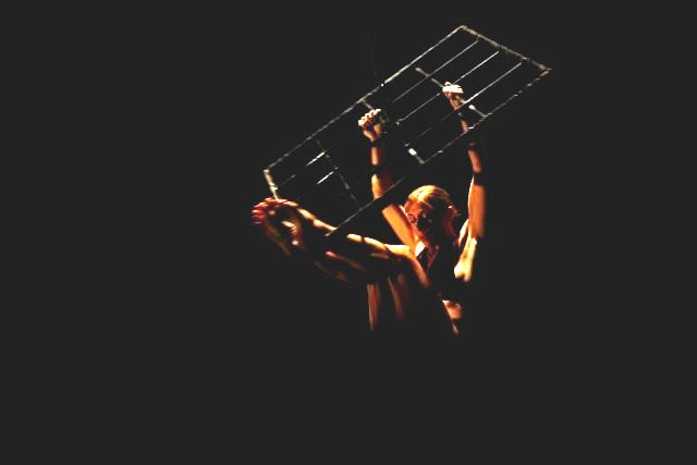 Donna Grid - Ailey 2009 40+.jpg