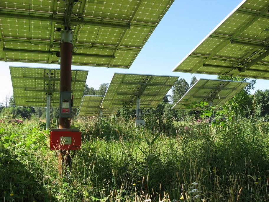 Over 80% of the farm's electrical demand is met by on site solar panels, which are intertied with the utility grid.