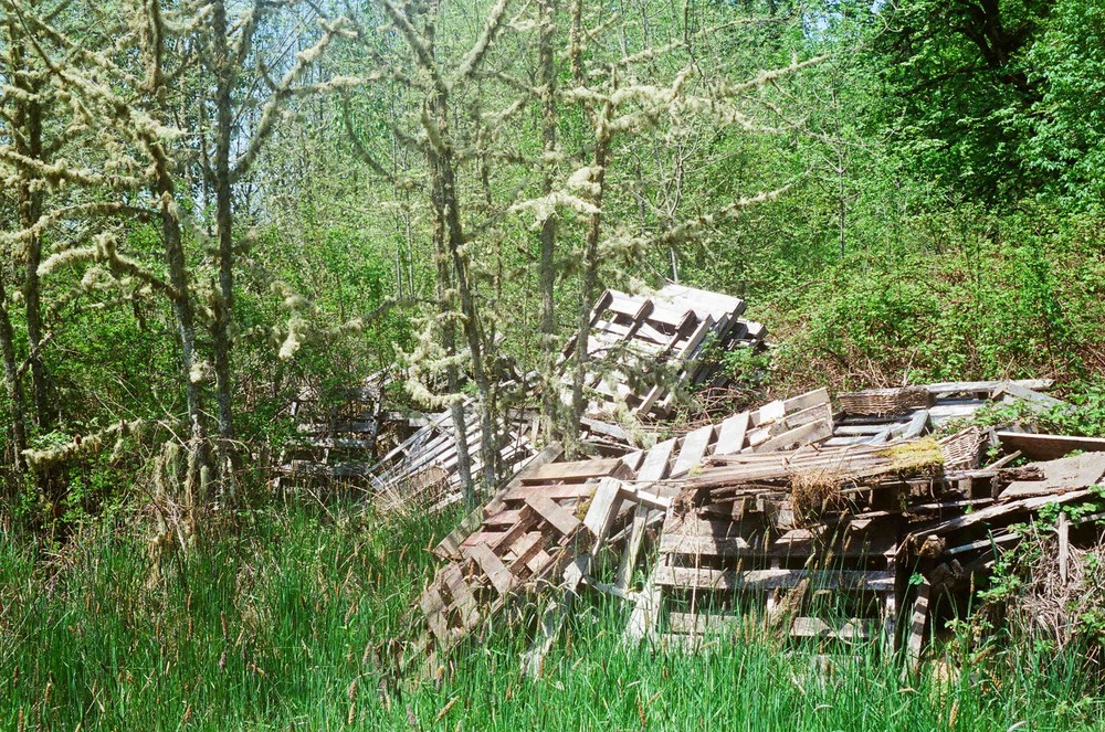 Old pallets and wood scraps accumulate and rot into the soil rather than being burned.