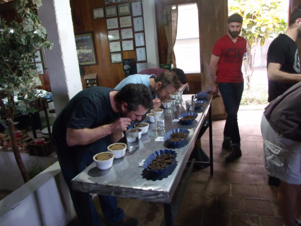 Rick, Randy, and Daniel cupping 42 micro-lots at the Menendez' cupping lab in El Salvador to select the best