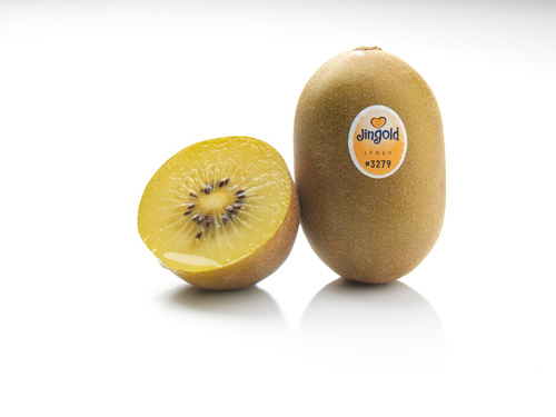Jingold Italian kiwifruit.  Click to download high resolution image.