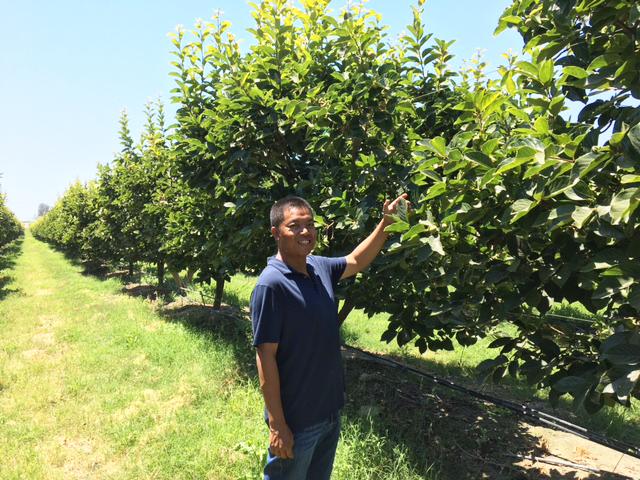 Our grower, Vannak Thol.