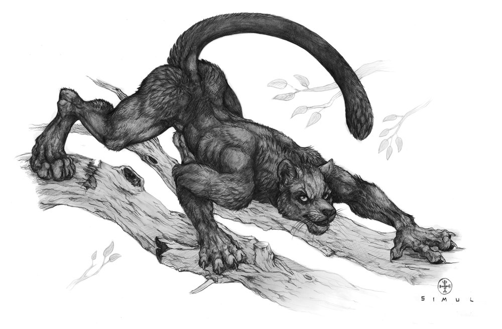 ProwlingPanther.jpg