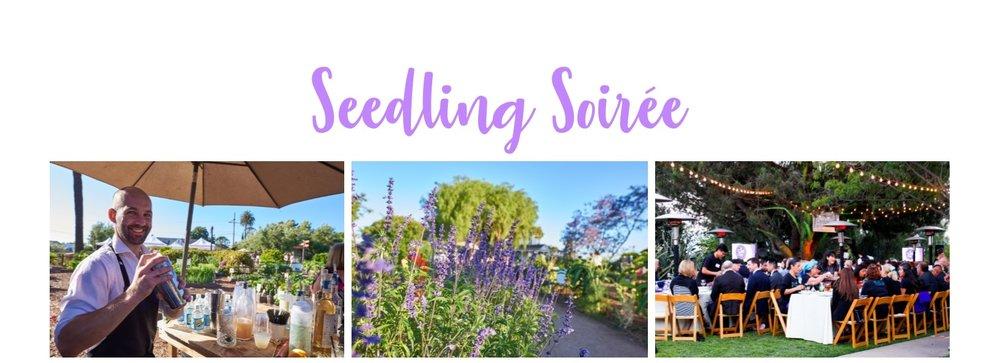 Seedling-Soiree-banner-2.jpg