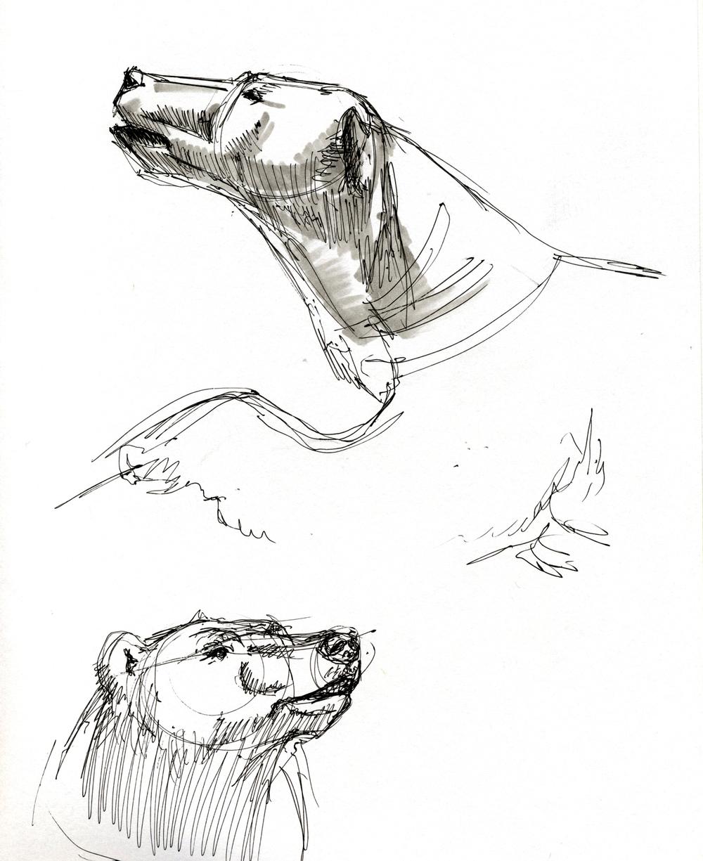 sketch 3.jpeg