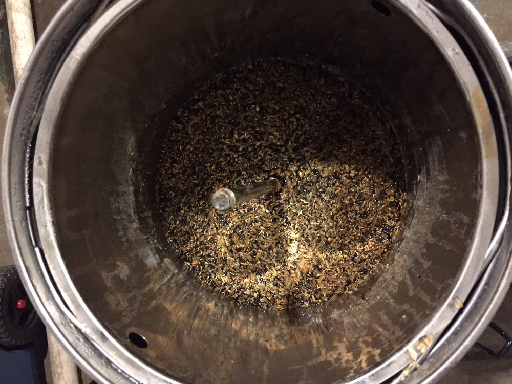 Here's a Irish Stout mash in a Grainfather all-grain brew system.