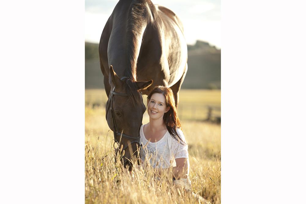 Horse Portrait - Pukekohe