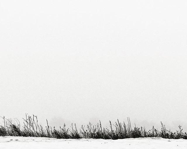 Quiet coldness.