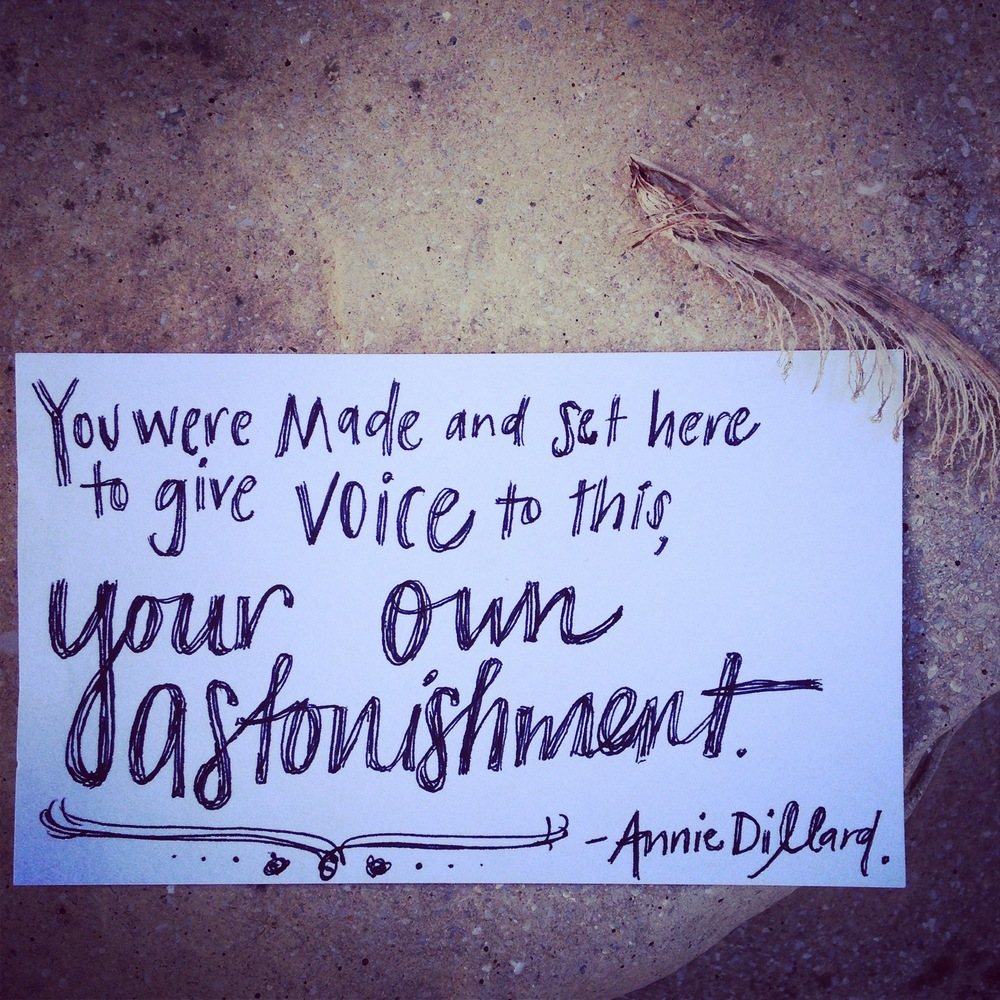 Give voice to your astonishment. Write what makes you passionate. Speak up. | lucyflint.com