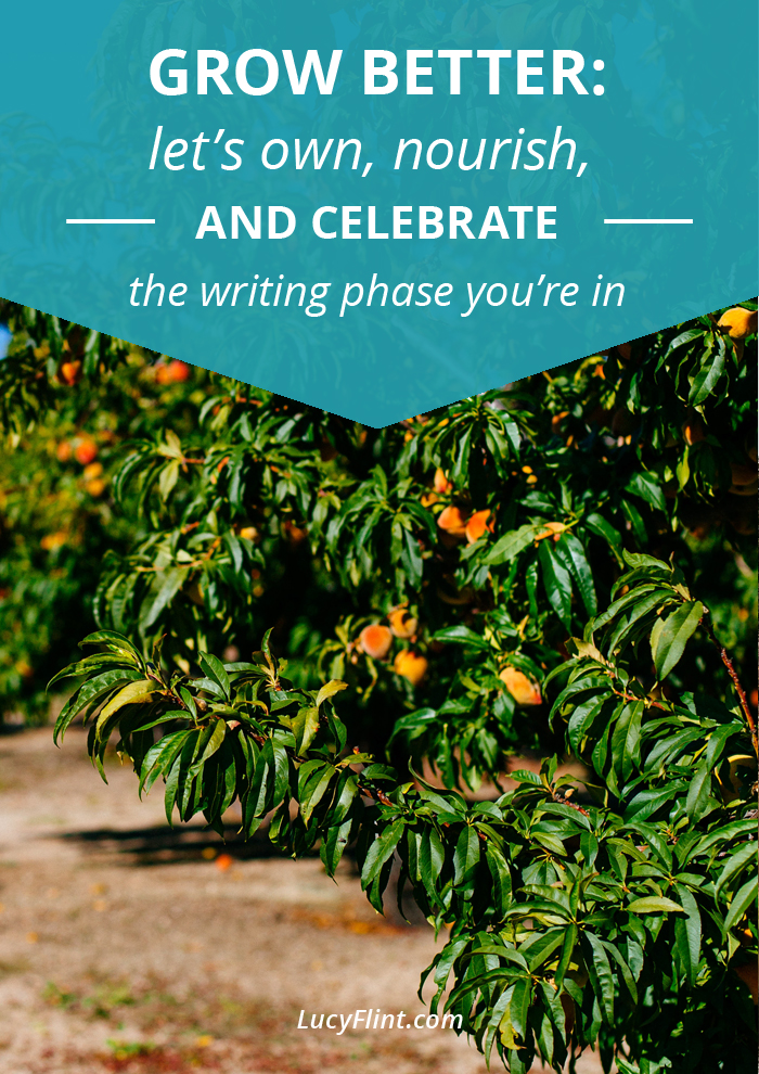 Writing projects have life cycles, just like any growing, fruitful thing. Which season are you in? Here's how to embrace all it has to offer. | lucyflint.com