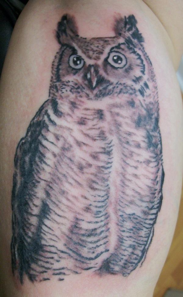 Romeo Lacoste-blck owl.JPG