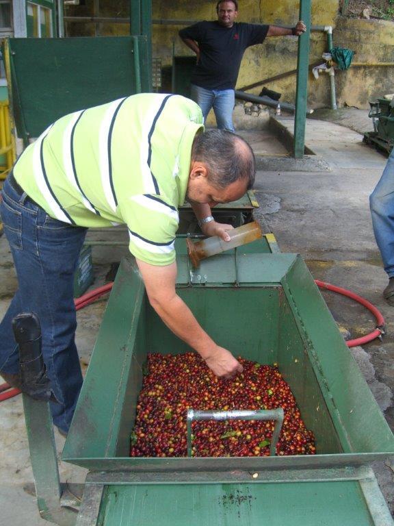 Costa Rica Februuary 2012 032.jpg