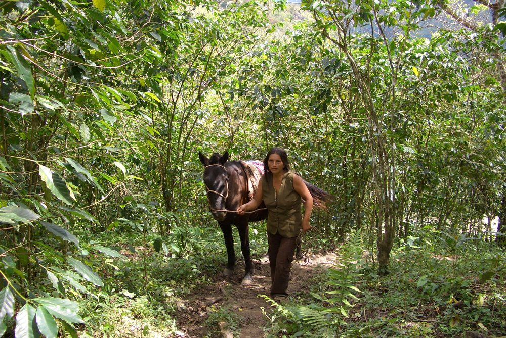 PERU2005 079.jpg