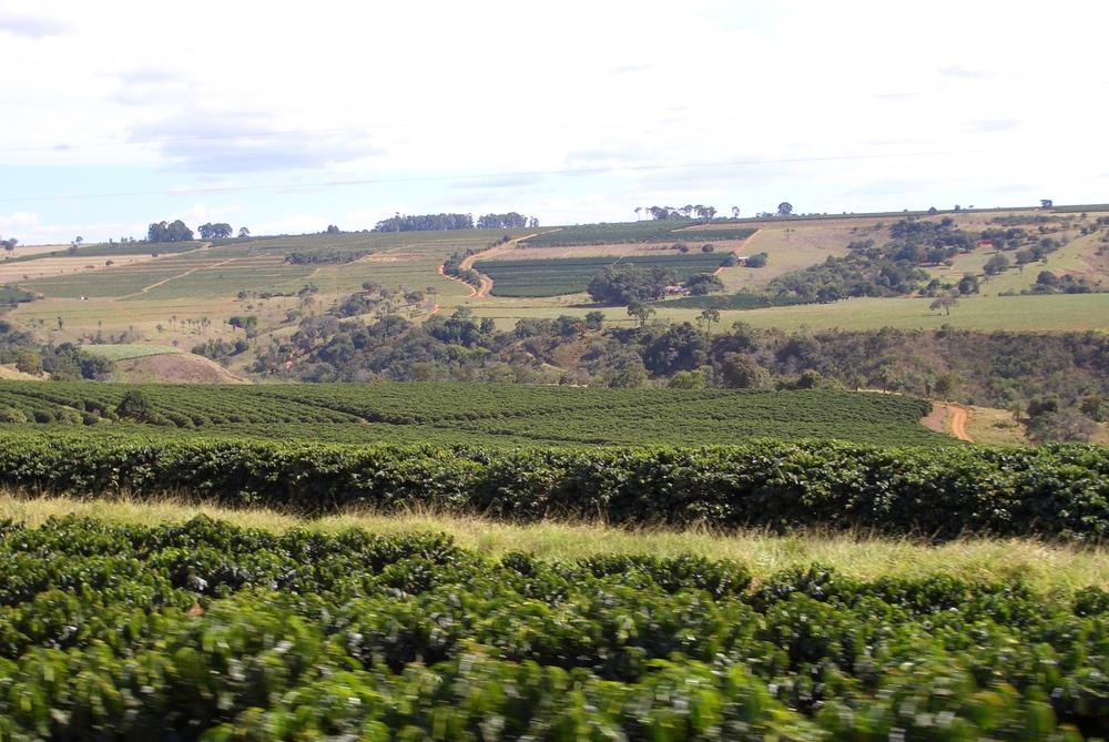 BRAZIL 2005 110.jpg