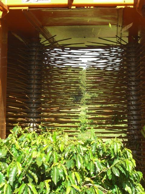 CAMARA FELIPE SEP 2009 218.JPG