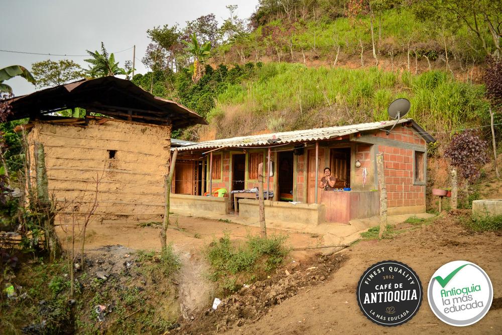 Antioquia Micro-lot La Granja 1.jpg