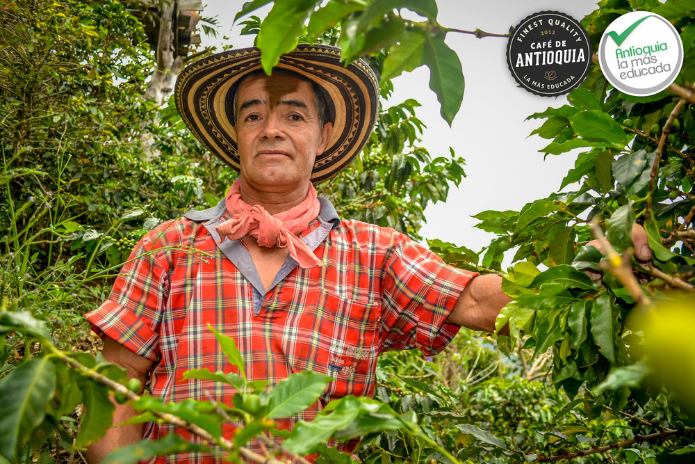 Antioquia Microlot Finca El Rodeo 7.jpg