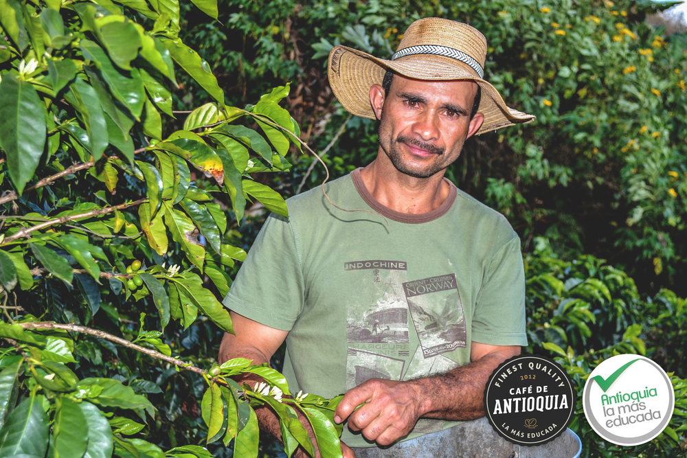 Antioquia Microlot Finca Los Cedros 2.jpg