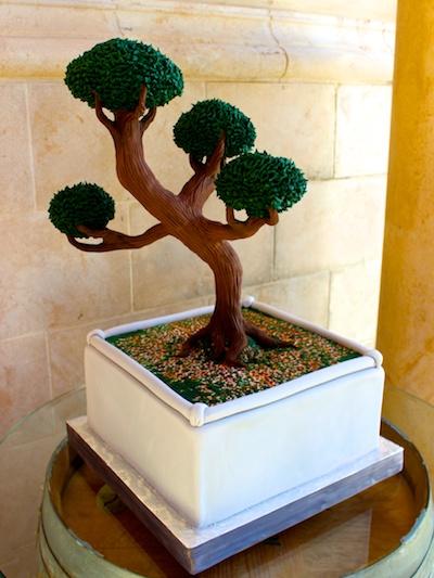 bonsai-grooms-1.jpg