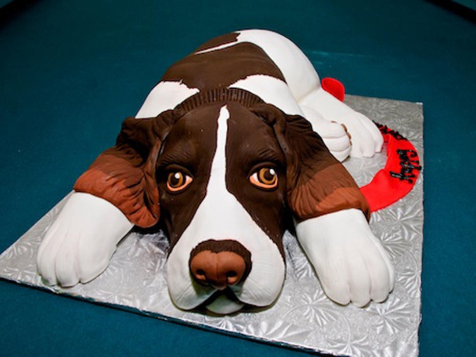 birthday-dog-1.jpg