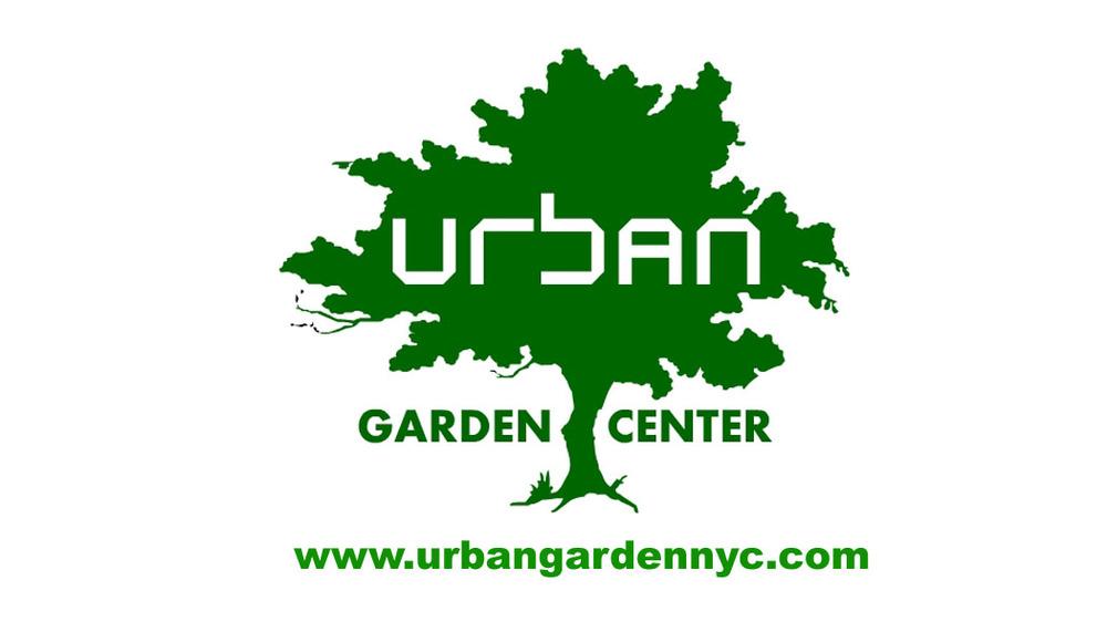 urbanbuscard.psd.jpg