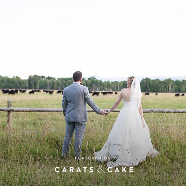 kate and erik carats and cake.jpg