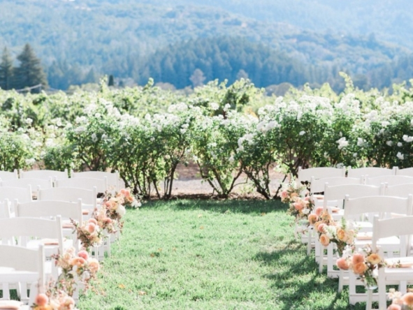 Carats & Cake Napa Wedding Aisle.jpg