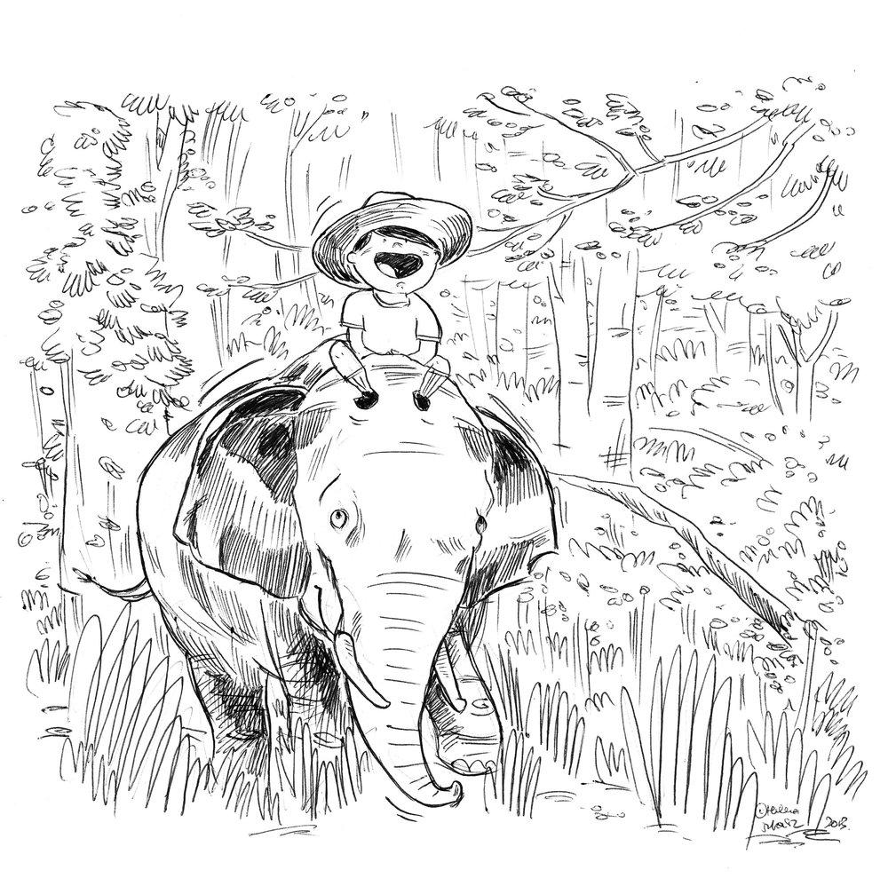 Boy-on-elephant.jpg