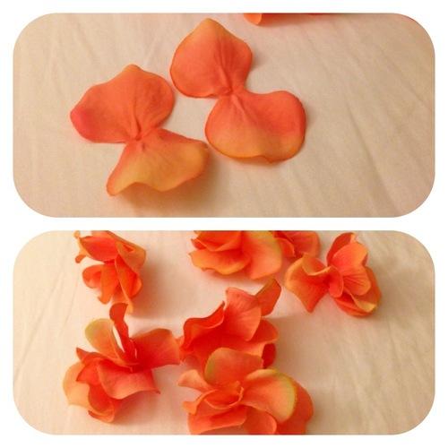 flowercrown2.jpg