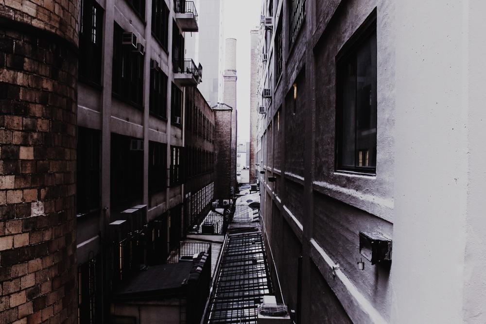 The Highline, Chelsea NY, NY 2014