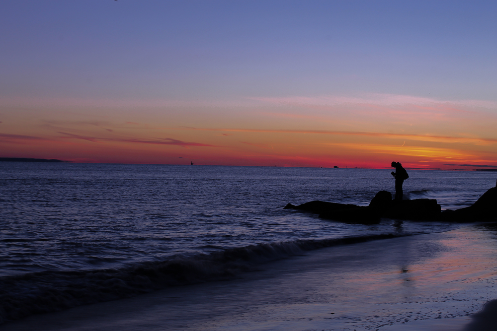 Coney Island, 2014