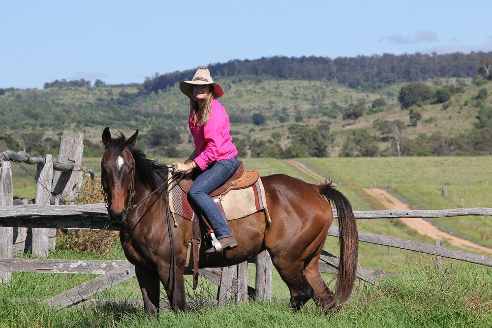 prue queensland horse
