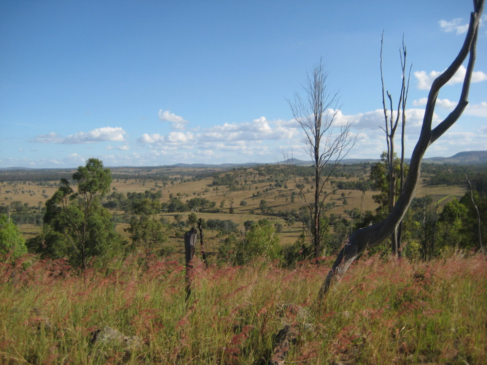 Queensland Greystonlea view landscape