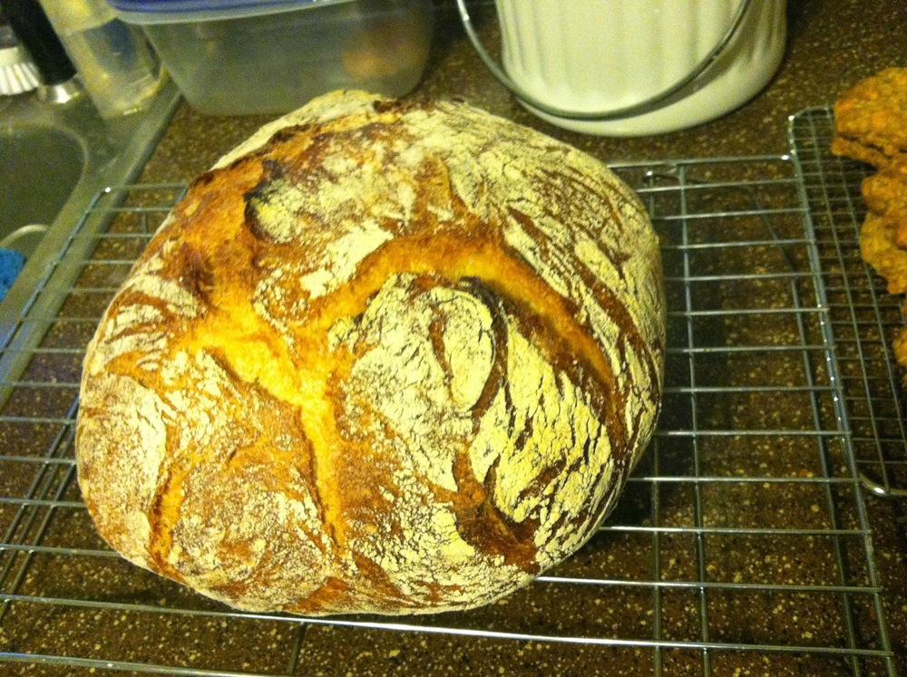 FWSY+second+try.JPG