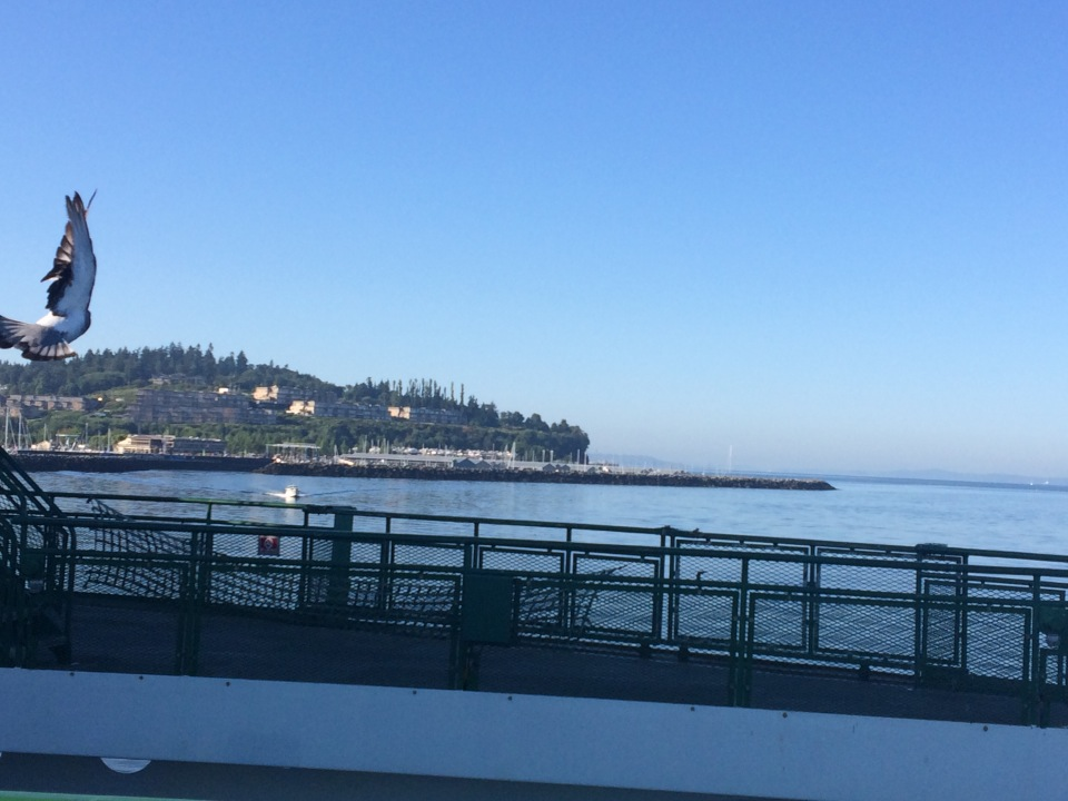 Edmonds as seen from the ferry