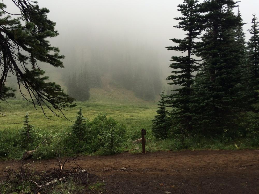 Glacier Basin trail, Emmons Moraine
