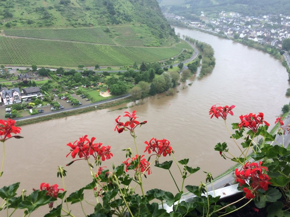 View of the Mosel from Cochem castle-- you can see how much it had been raining by how high the river is!