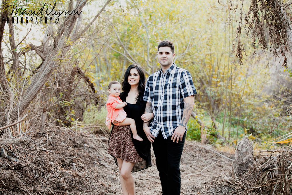family15.jpg