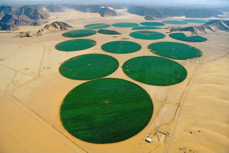 Irrigation in the desert.