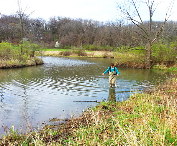 Brush Creek-Blue Confluence Ecosystem Restoration